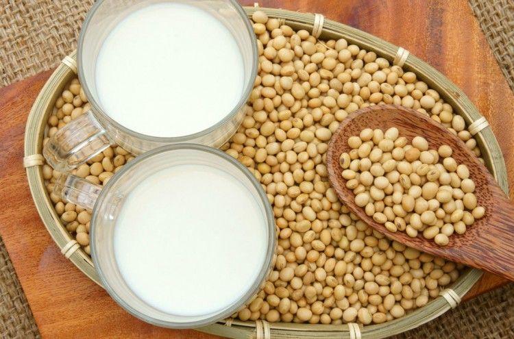 Img embarazo calcio leche soja art