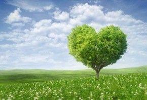 Img entorno dia corazon