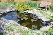Img estanque jardin list