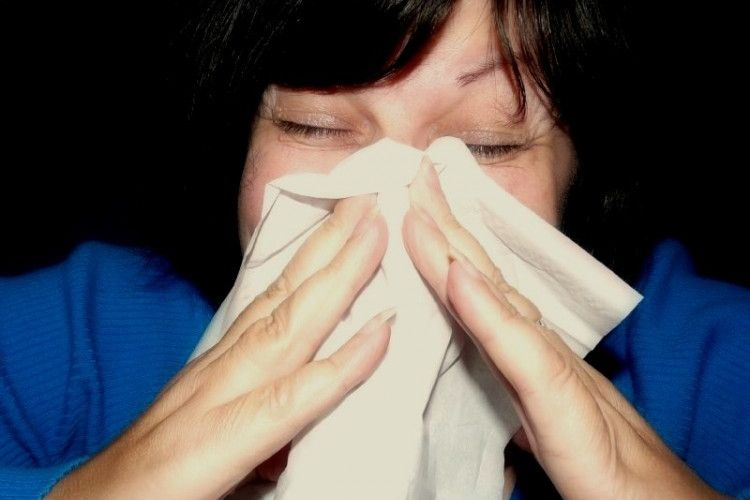 Img estornudo grande