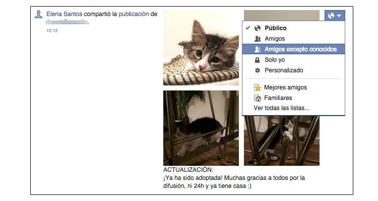 Img facebook revision publicaciones