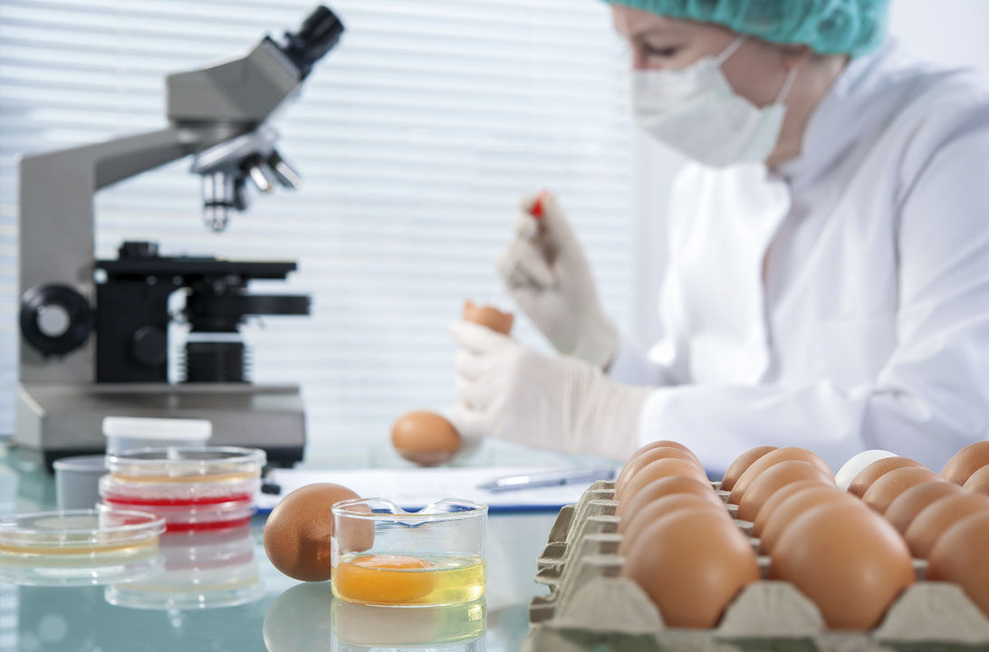 Img factores contaminan alimentos hd