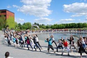 Img flashmob art