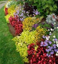 Img flores rocalla art