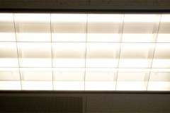 Img fluoreszente art2