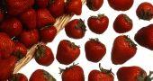 Img fresas frescas hd