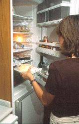 Img frigo1