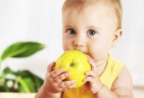 Img fruta lactancia bebes
