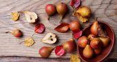 Img frutas otonales arbol mesa hd