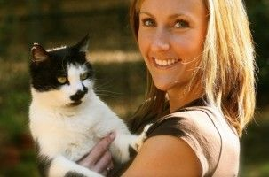 Img gatos gatas esterilizadas esterilizar mascotas ventajas salud cancer embarazos animales cachorros art