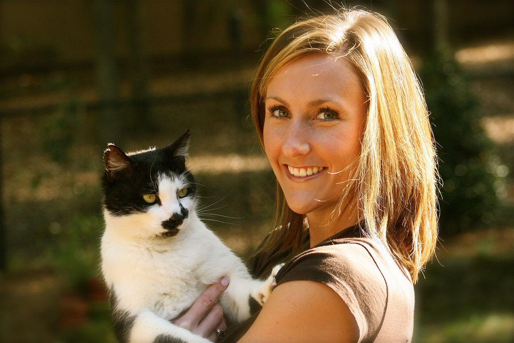 img_gatos gatas esterilizadas esterilizar mascotas ventajas salud cancer embarazos animales