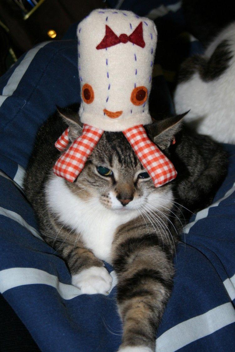 Img gatos juguete pulpo art
