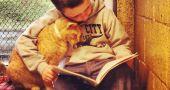 Img gatos ninos beneficios