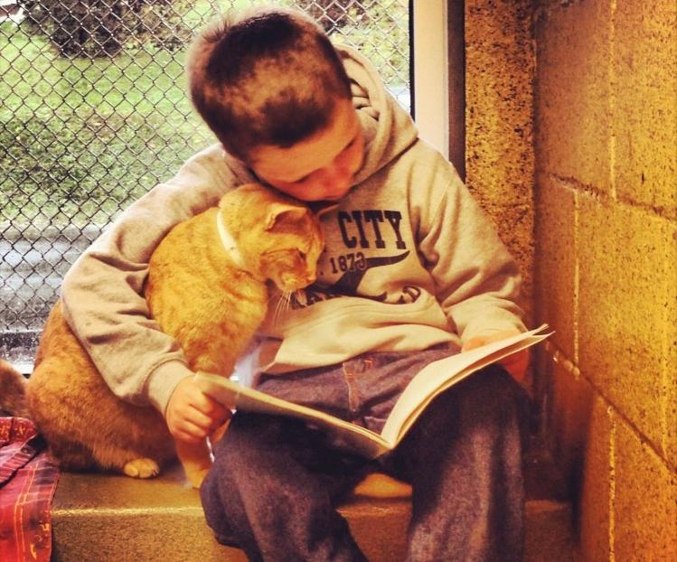 Img gatos ninos beneficios leer