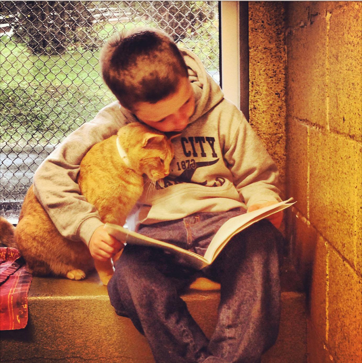 img_gatos ninos beneficios