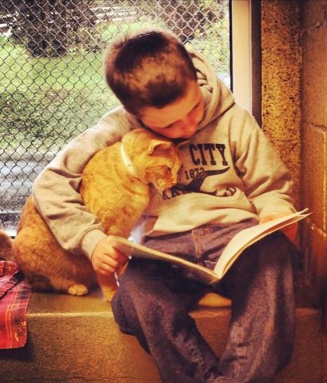 Img gatos ninos beneficioss art