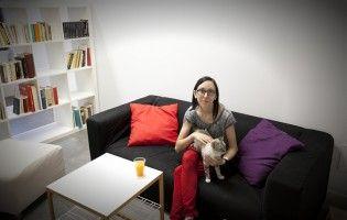 Img gatoteca cafe para gatos cat cafe madrid amigos de gatos localesa art