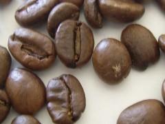 Img genoma cafe1