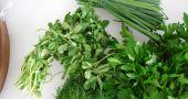Img hierbas arom hd