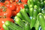 Img hortalizas verano listp