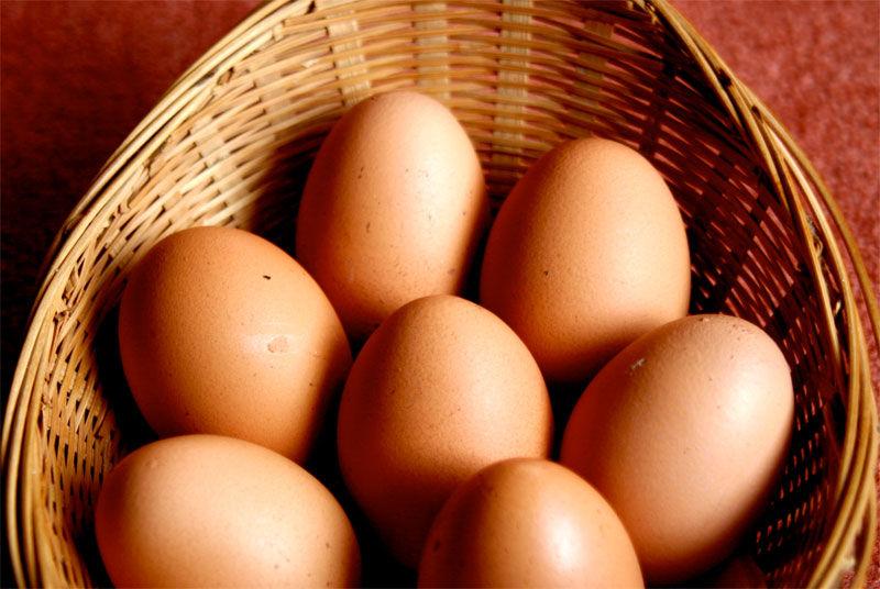 img_huevos 2