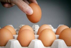Img huevos contaminacion fipronil