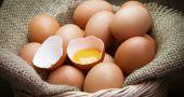 Img huevos novedad hd