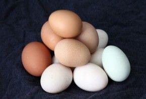 Img huevos varios