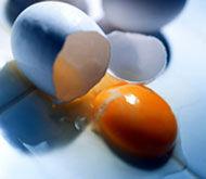 Img huevos portadilla