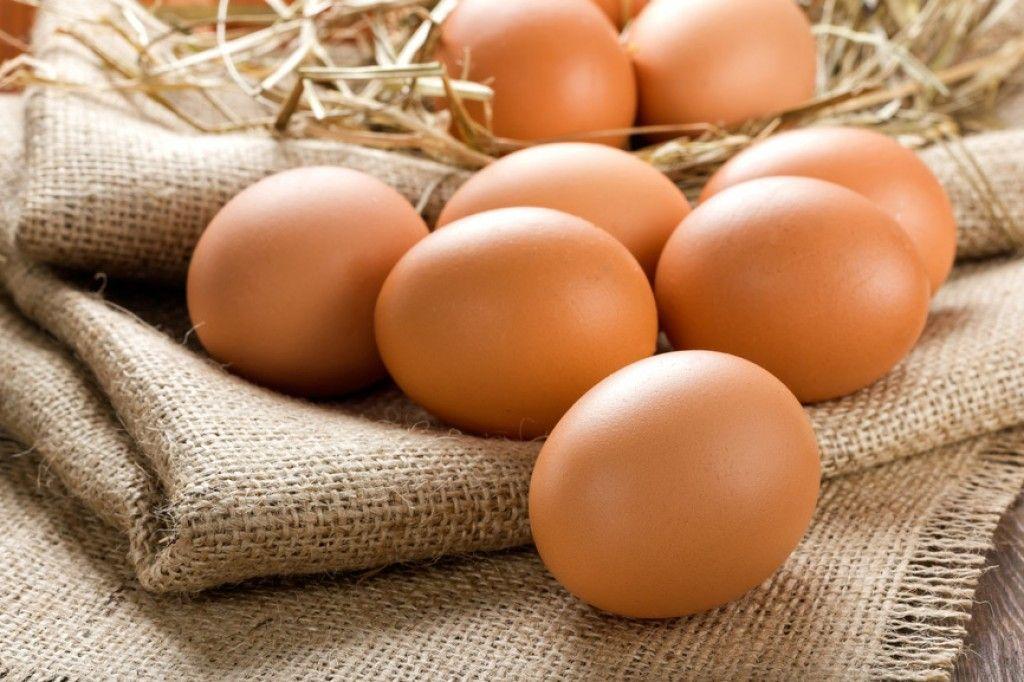 Img huevos salmonella hd