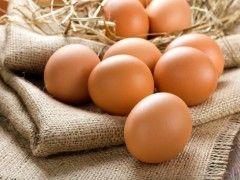 Img huevos salmonella1
