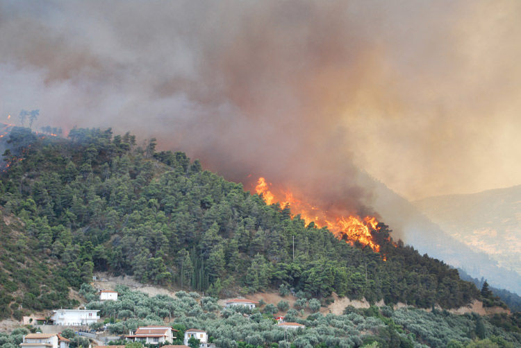 Img incendioforestal bosque