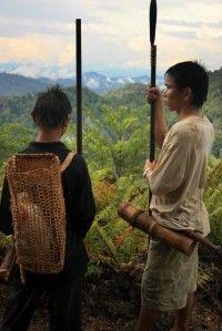Img indigenaspenanes