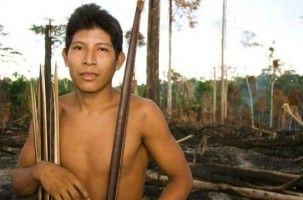 Img indigenatribu art