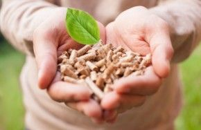 Img industria alimentaria energia sostenible