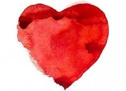 Img insuf cardiaca art
