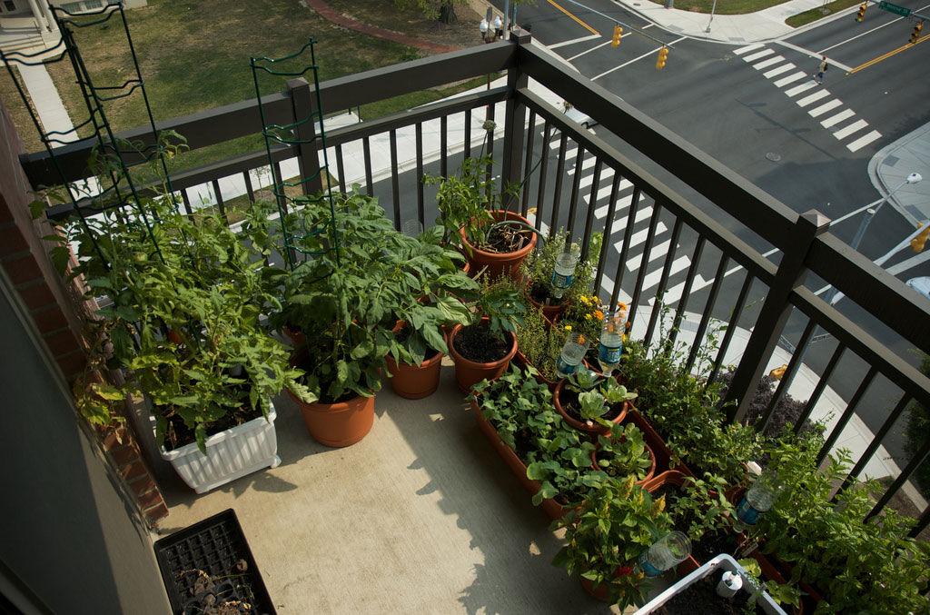img_jardin balcon 1