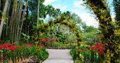 Img jardin botanico singapur hd
