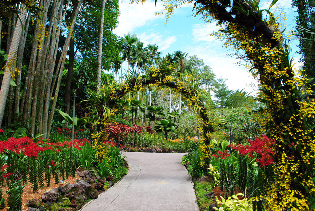 img_jardin botanico singapur hd_