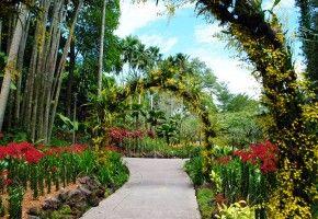Img jardin botanico