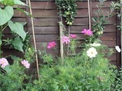 Img jardin art