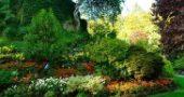 Img jardin list
