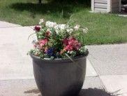 Img jardineralist