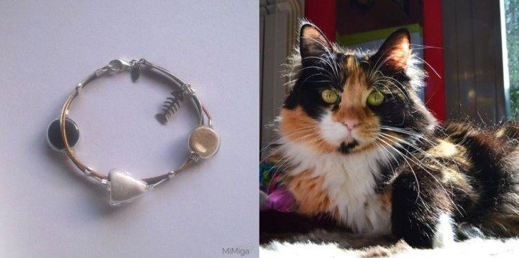 Img joyas con pelos gatos perros art