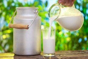 Img lactosa jarra 01
