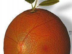 Img laser fruta1