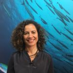 Laura Rodríguez, directora de MSC en España e Portugal
