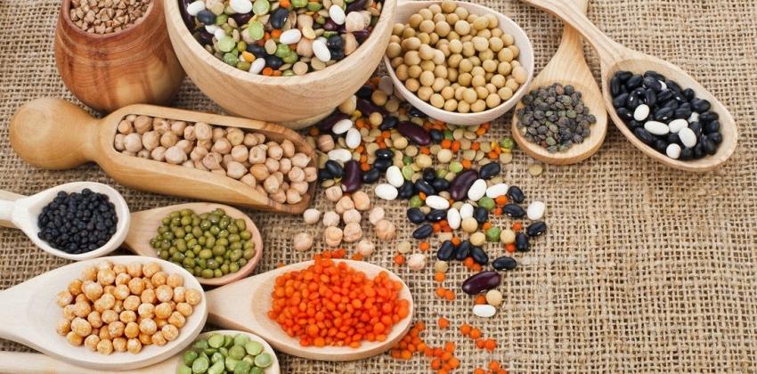 Img legumbres elegir propiedades port