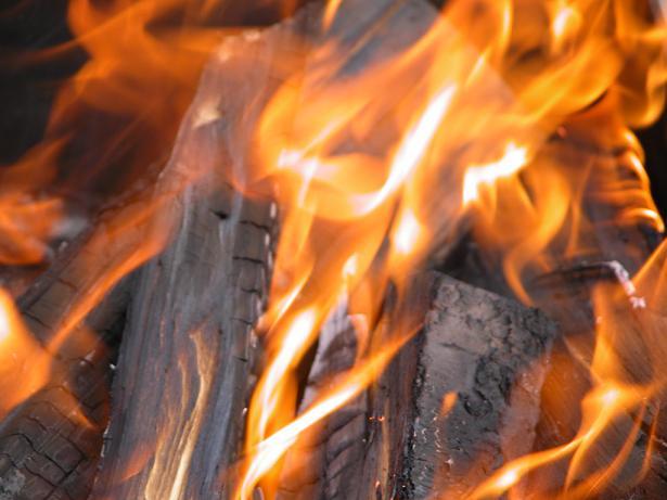 Img lena fuego