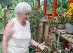 Img longevidad mujer art